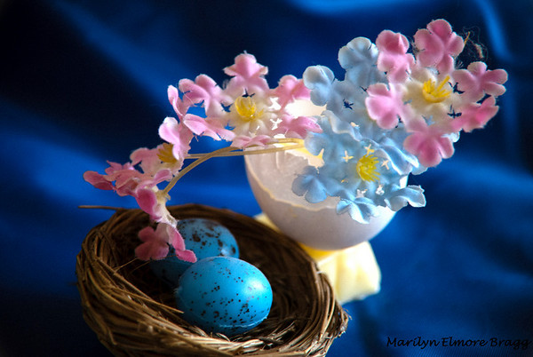 Egg Shells, Butter, and Flowers