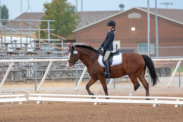 Pumpkin Horseshow 8-8-18