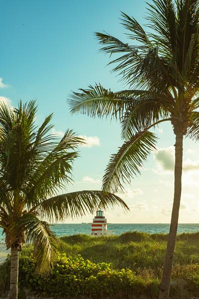 Miami-171.jpg