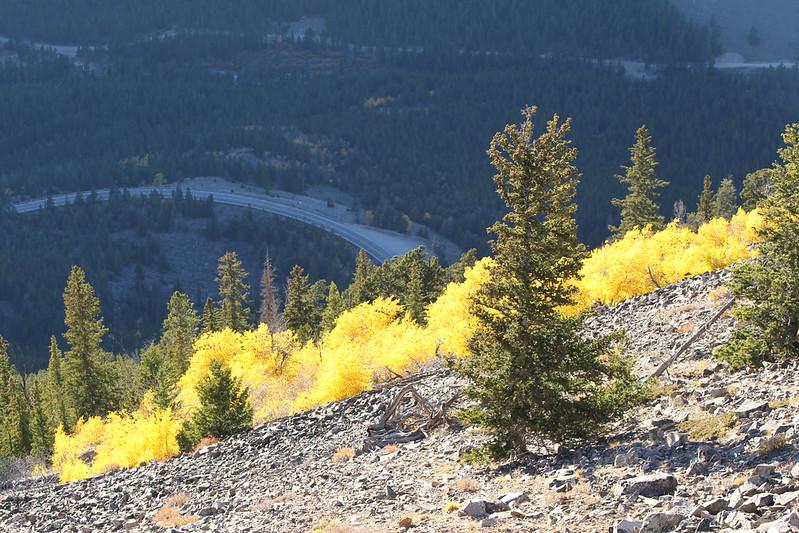 Fall Trip Wyoming & Montana 2016 (17 of 193).jpg