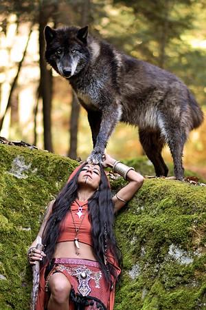 Xena & Ironwood Wolves