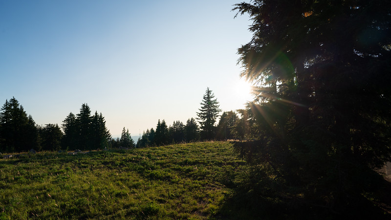Oregon-60.jpg