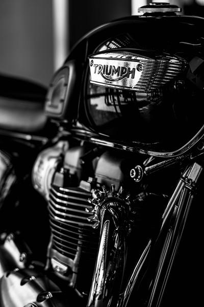 Triumph Ride