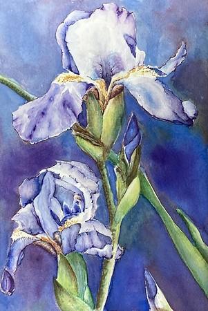 """Purple Dreams"" (watercolor) by Kate Greenway"