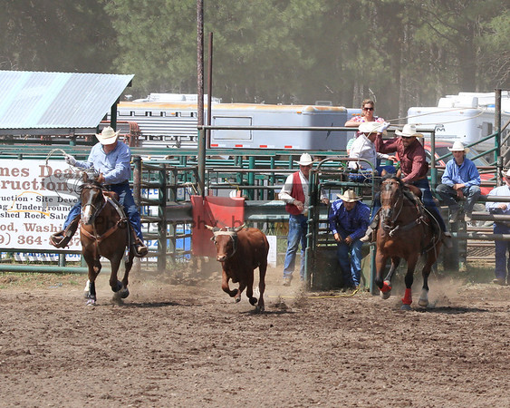 Ketchum Kalf Team Roping/Glenwood 2013