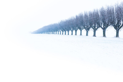 Fota vinterlandskap