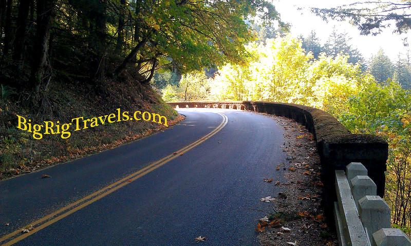 curved road copy.jpg