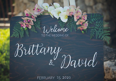 Brittany & David
