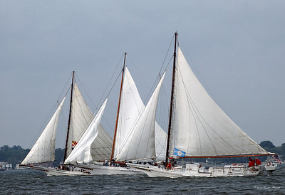 2010 Deal Island Skipjack Race