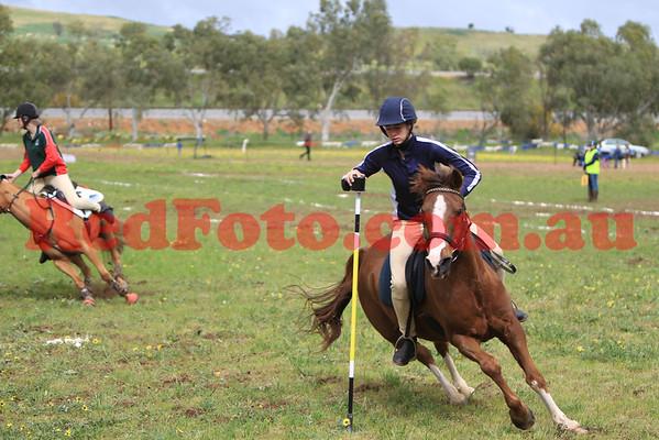 2014 09 07 PCAWA Active Riding Champs Qualifier Game 3 3 Mug