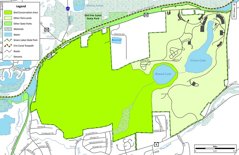 Green Lakes State Park (Bird Conservation Area)
