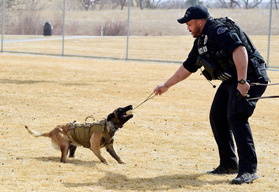 Photos: Longmont PD Adds New Police Dog