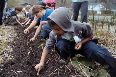 web.newfield_garden_planting_1.jpg