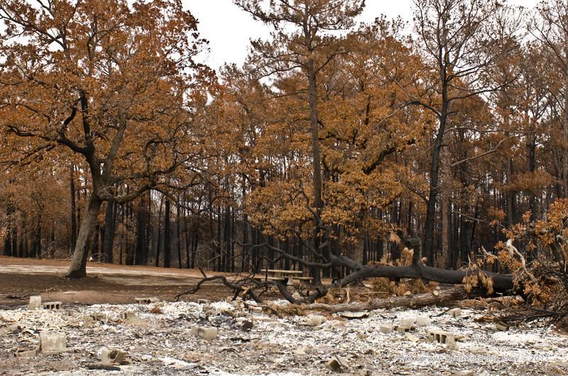 TexasWildfires2011