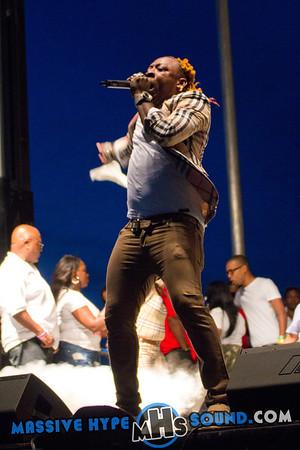 Reggae Splash World Music & International Food Festival (8.24.13)