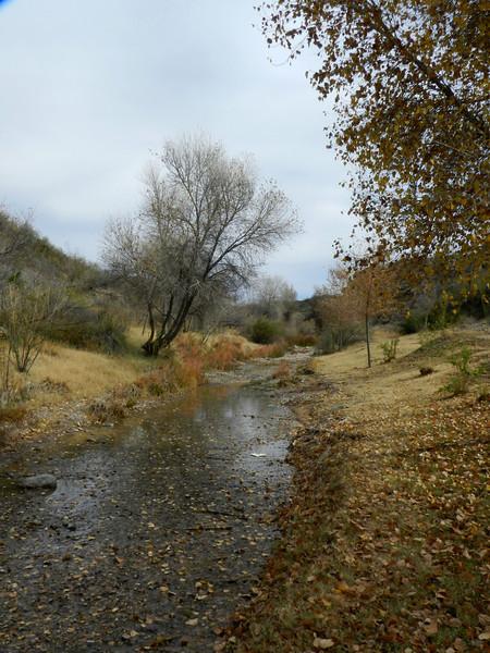 Chinati Hot Springs creek4.jpg