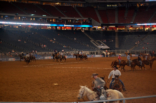 Houston Rodeo 2013
