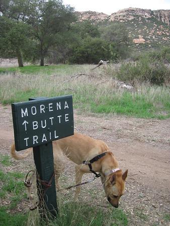 11-29-13 Morena Butte-Guatay