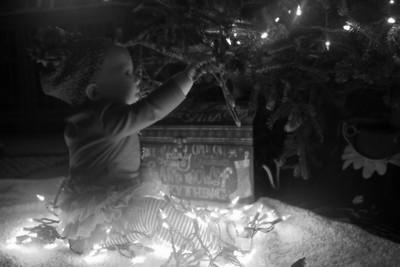 2015 Ivy Christmas Pics