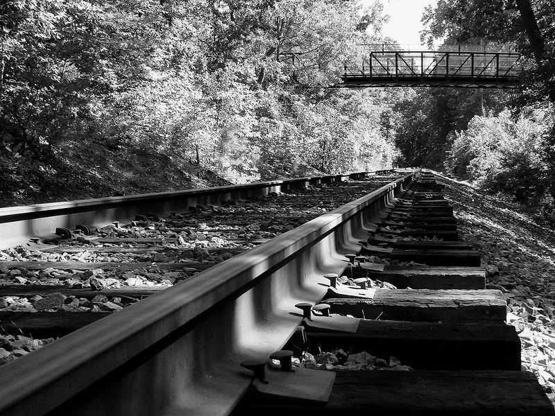 019 Track Perspective.jpg