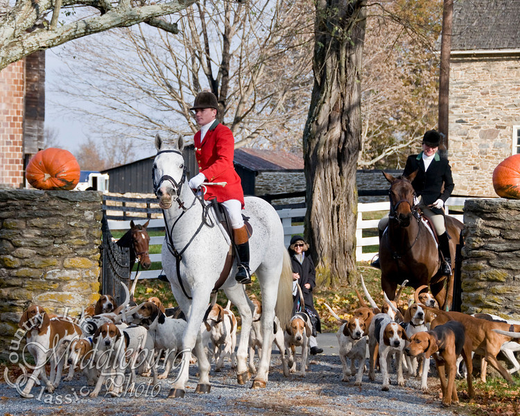 Middleburg Hunt, Open Meet, 2009