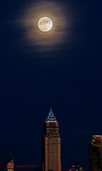 Moon Over Xmas-5.jpg