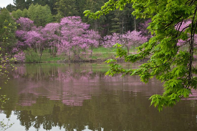 Spring13-0474.jpg