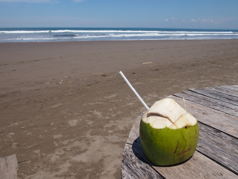 P4096557-beach-coconut.JPG