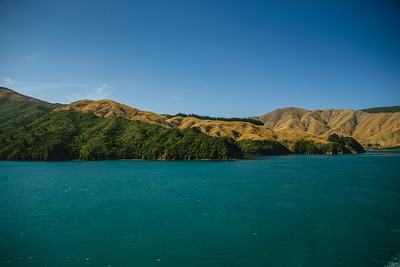 2015-03-09-New-Zealand-286.jpg