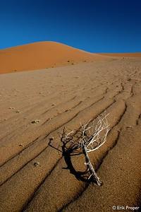 Namibia, 2006