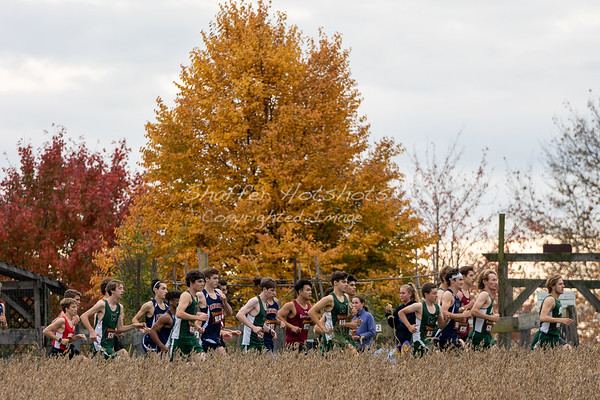 Fall 2019:  ISL/MAC Cross Country Championship