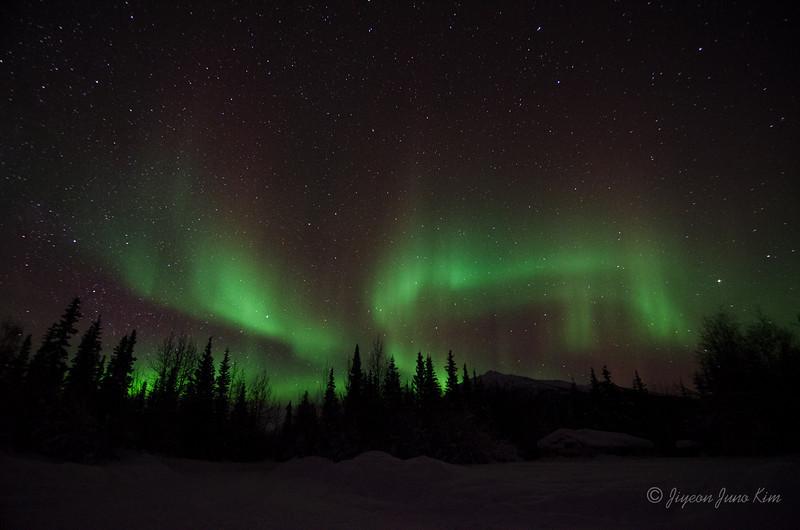 USA-Alaska-Wiseman-Aurora-2840.jpg