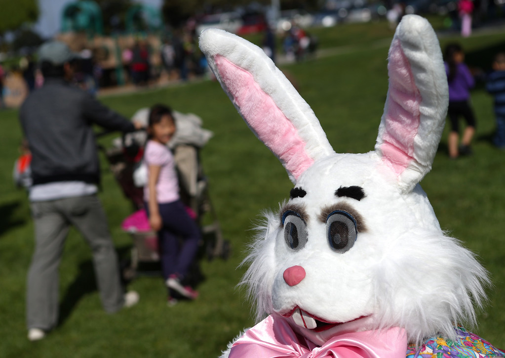 . Teresa Glaze, of San Leandro, as the Easter Bunny, is poses for pictures at the annual San Leandro Easter egg hunt held at Marina Park in San Leandro, Calif., Saturday, April 12, 2014. Glaze has been volunteering as the Easter Bunny for the past 41 years. The event has been held every year since 1951 and this year is sponsored by the San Leandro Optimist Club. 8,000 eggs with a candy or sticker surprise were given away. (Anda Chu/Bay Area News Group)