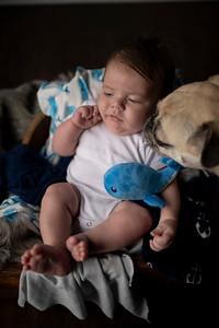 Calvin! | Port Washington Family Photography