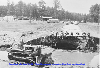 THE FLOOD OF 1972 NEAR NEMO ROAD  There has been considerable coverage about the devastation that hit the immediate Rapid City, South Dakota, area in the massive flood of 1972.  As you might expect, there were other areas in the Black Hills region that were affected by the flood.  The following flood photos were taken the day after the flood by Vern Kraemer on June 10, 1972 and provided to us by his wife, Norma.  Este Creek after the flood of 6/9/72.  The bridge crossing the road on Estes Creek on Nemo Road.