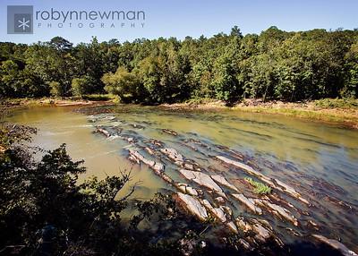Sprewell Bluff State Park, Georgia
