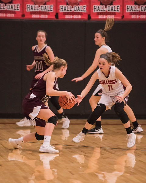 2019 Varsity Girls Basketball:  Hall-Dale vs Richmond