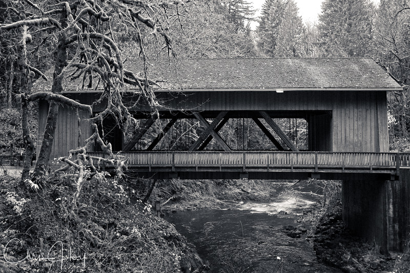 Covered Brige on the Lewis River