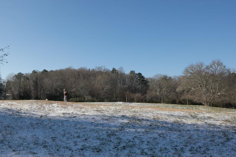 January Snow.jpg