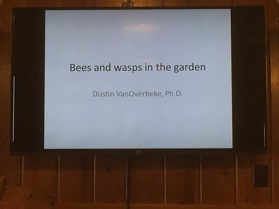 Feb 2015 - Bee's and Bugs