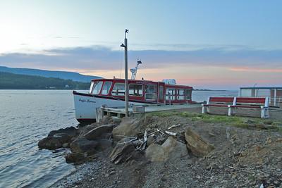 Puffins - Cape Breton