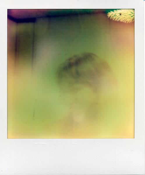 polaroid030.jpg
