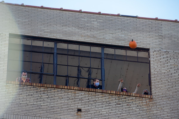 City Museum: Pumpkins & Gravity Oct. 2020