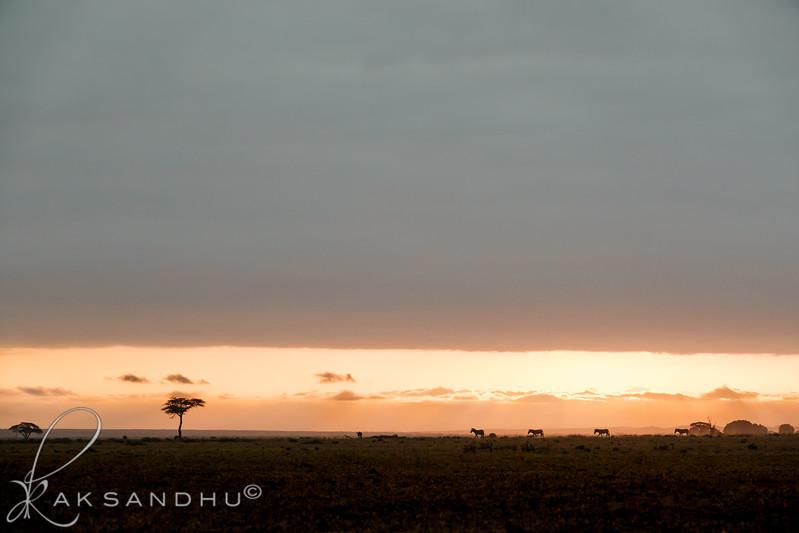 SunInAfrica-008.jpg
