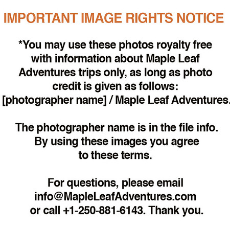 1 IMPORTANT RIGHTS NOTICE - By using images you agree to this. Please read.