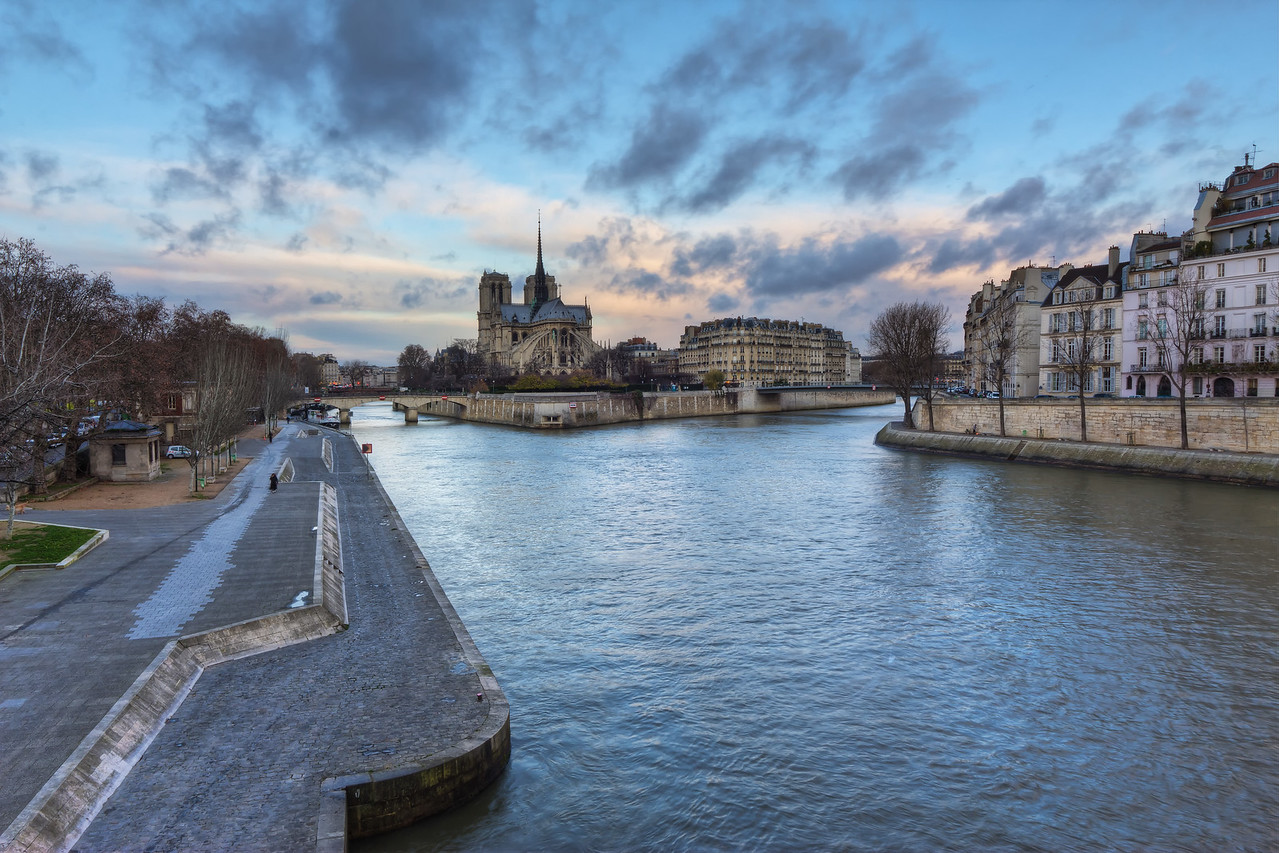 Notre Dame and the Cold Morning