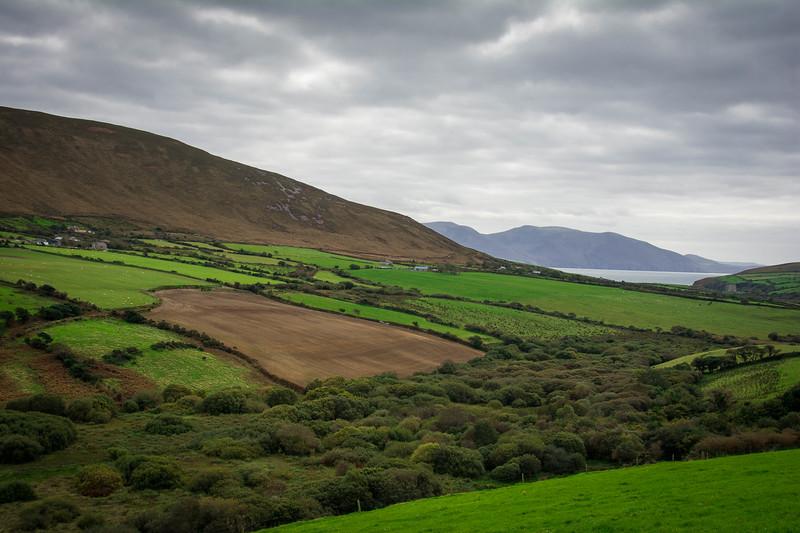 Ireland102.jpg