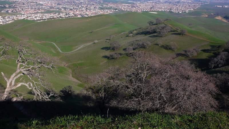 ridge-trail-8.jpg