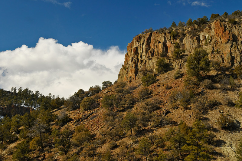 Apache National Forest, New Mexico