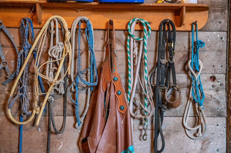 Horn Ranch-2205.jpg